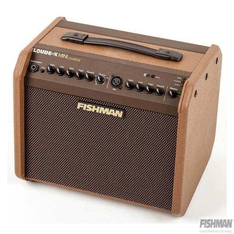 Loudbox Mini Charge – 60 watt